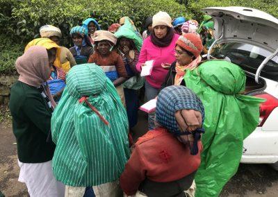 Green Menstruation and Fair Trade