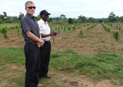 Reforestation as a Building Block to Community Economic Development